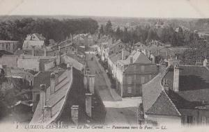Luxeuil Les Bains La Rue Carnot Antique Aerial Birds Eye France French Postcard
