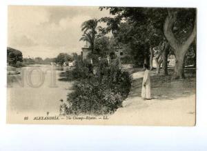 133248 EGYPT ALEXANDRIA Champs-Elysees Vintage postcard