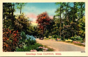 Mississippi Greetings From Canton