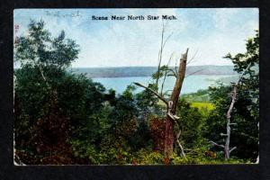 MI 1900's View NORTH STAR MICHIGAN Postcard Post Card
