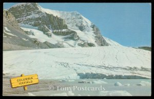The Columbia Icefields