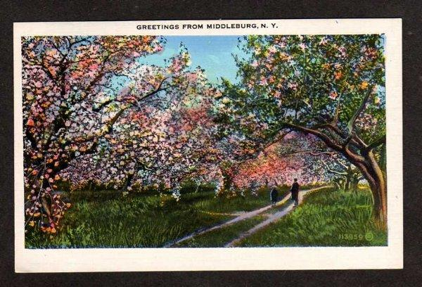 NY Greetings from MIDDLEBURG NEW YORK Postcard PC