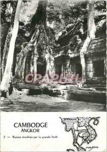 Postcard Modern Cambodia Angkor ruins overgrown with large Foret
