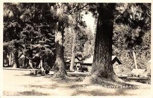 F26/ Suttle Lake Oregon RPPC Postcard c1940s Park Cabins