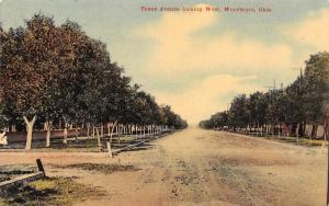 Woodward Oklahoma~Texas Avenue Looking West~Homes on Muddy Road~1910 Postcard