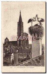 Postcard Old Strasbourg Storks