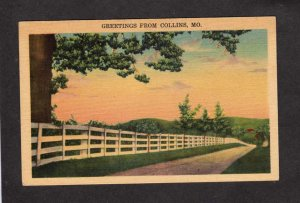 MO Greetings From Collins Missouri Linen Postcard Scenery Road Trees