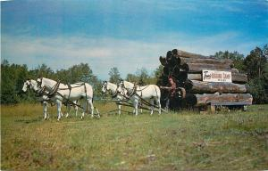 Duluth MN~Toms Logging Camp And Museum~Toms Trading Post~1960s Postcard