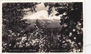 RP; General View of Mount Shasta in the Spring, California, 10-20s