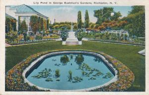 Lily Pond at George Eastman House Gardens - Rochester, New York - WB