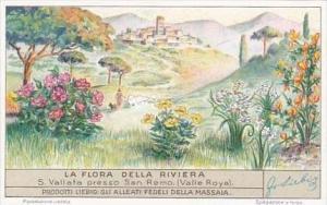 Liebig Trade Card S1354 Flora Riviera No 5 Vallata presso San Remo