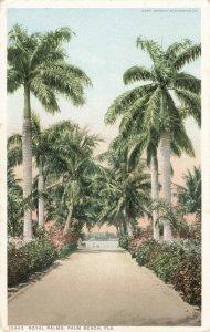 Postcard Royal Palms Palm Beach Florida