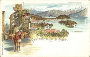 Souvenir Lac De Como Italy Mult View Lithograph c1900 Postcard