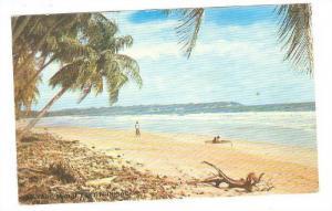 Mayaro , Trinidad , W.I. , 40-60s