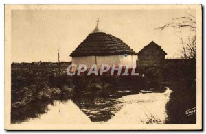 Old Postcard In Camargue herdsman's hut is reflecting in a roubine