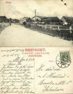 denmark, HØJREBY, Partial Town View (1909) Postcard