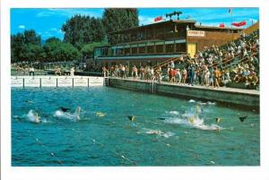 Swimming race, Ogopogo swimming pool, Kelowna Aquatic Club , Kelowna, B.C., C...