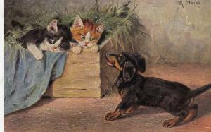 Dachshund barking at two kittens in a box, 1900-10s
