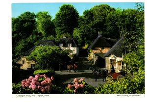 GIANT, Cockington Forge, Torquay, Devon, Horse and Buggy, Vintage Postcard