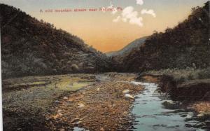 RENOVO PENNSYLVANIA~WILD MOUNTAIN STREAM~SWEELEY'S POSTCARD 1910s