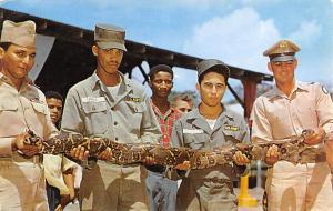 Panama Old Vintage Antique Post Card Boa Constrictor snake Fort Sherman Unused