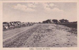 LIBYA, 1900-10s; Camels, Carovana Nel Deserto