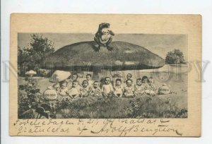 431867 Multiple Babies FROG Huge MUSHROOM Vintage postcard 1904 year