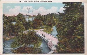 New York Niagara Falls Luna Island Bridge