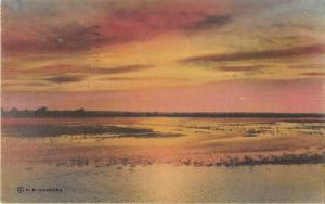 Rio Grande Texas Sunset Scene Hand Colored Antique Postcard J51402