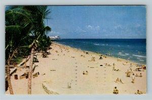 Miami FL- Florida, Miami Beach, Sun Bathers, Ocean View, Chrome c1952Postcard