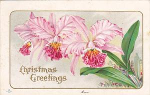 Christmas Embossed Pink Orchids 1912
