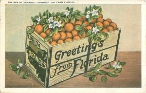 Greetings from Florida Box of Oranges I Promised You  1925 Postcard