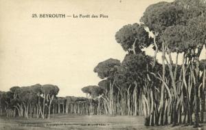 lebanon, BEIRUT BEYROUTH, La Forêt des Pins, Pine Forest (1920) Deychamps Nr. 23