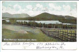 Moosehead Lake, ME - Wilson Pond - 1906