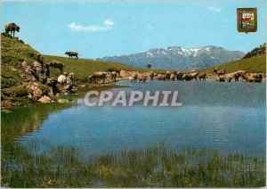Postcard Modern Pirineu Catala (Lleida) Vall d'Aran port Bonalgue