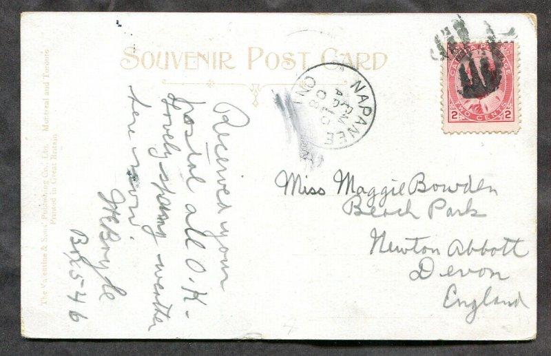 541 - NAPANEE Ontario 1908 Public Park and Library Postcard