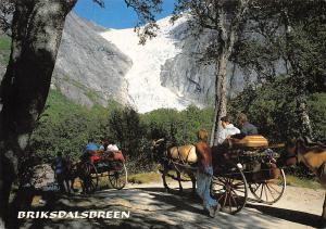 Norway Briksdalsbreen Briksdalsbre Carriage with Horses