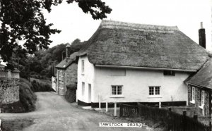 Vintage Real Photo Postcard,  Thatched Cottage, Tawstock, Devon 16X