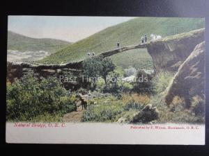 South Africa HARRISMITH O.R.C. NATURAL BRIDGE c1909 old Postcard by F. Wilson