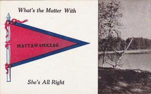 What's The Matter With Mattawamkeag Pennant Flag