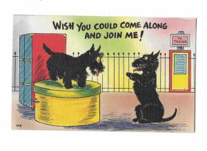 Two Scottish Terriers Scotty Dogs Wish you could join Me Comic