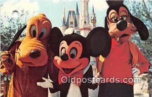 Mickey Mouse, Pluto, & Goofy Walt Disney World, FL, USA Postcard Post Card Wa...