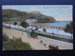 Wales LLANDUDNO Parade & Gt Orme shows HORSE OMNIBUS c1909 Postcard by Valentine