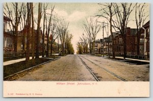 Johnstown New York~William Street~Trolley Tracks Run Past Victorian Homes~c1905