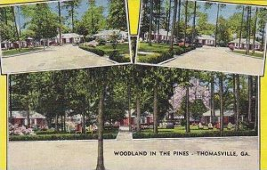 Georgia Thomasville Woodland In The Pines