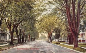 Eugene Oregon~South Olive Street Homes~Shade Tree Lined Road~1912 Postcard