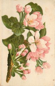 Vintage very embossed blossoms flowers fantasy postcard