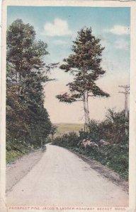 Massachusetts Becket Prosect Pine Jacobs Ladder Roadway 1920