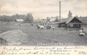 Saw Mill Beaver Brook NY 1907