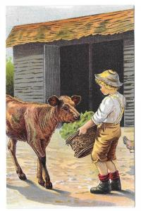 Trade Card Dr Free's York Dental Parlors Boy Feeding Calf